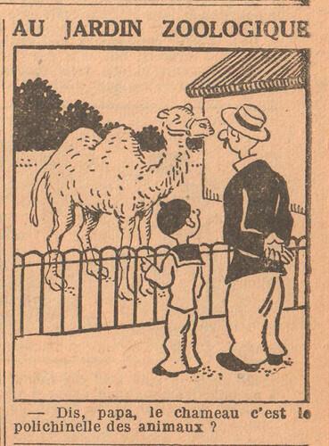 Le Petit Illustré 1929 - n°1296 - page 7 - Au jardin zoologique - 11 août 1929