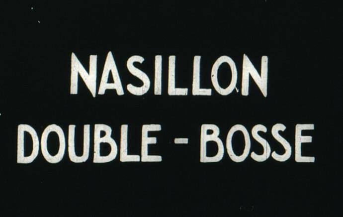 Nasillon 4 - image3