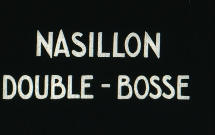 Nasillon 3 - image3