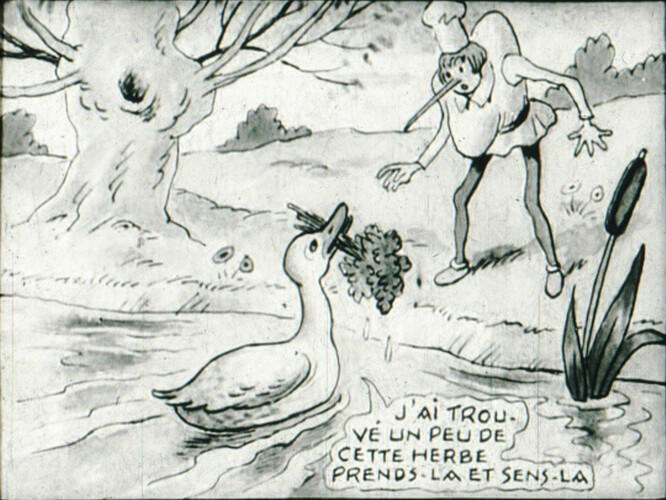 Nasillon 4 - image39